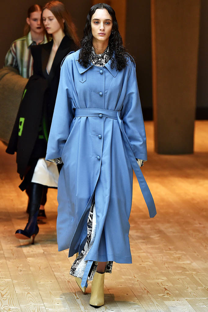Celine Paris Womenswear Fall Winter 2017  Paris March 2017